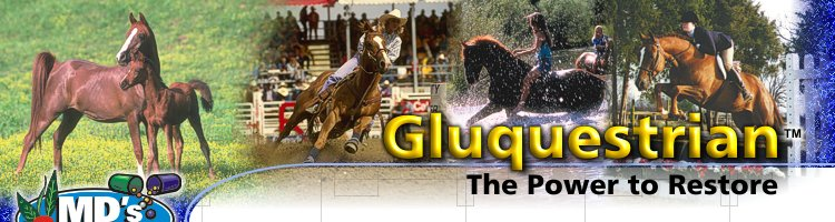 Gluquestrian: The Power to Restore